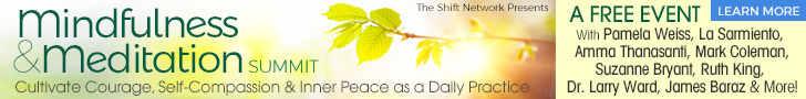 Free Mindfulness Summit